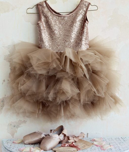 """Amabelle"" Blush Glamorous Sequin Dress"