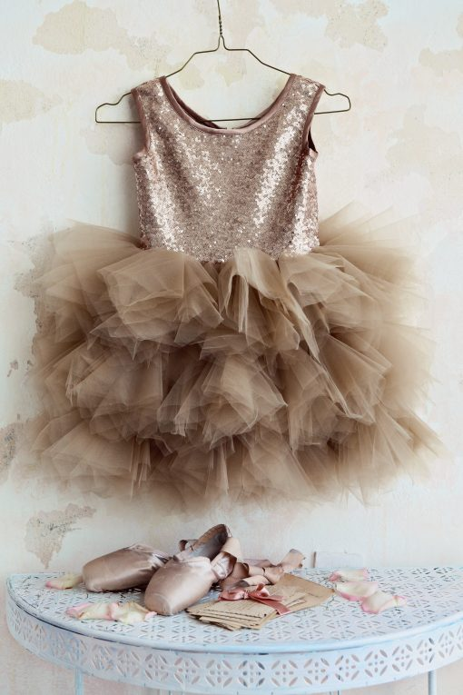 """Amabelle"" Blush Glamorous Sequin Dress"
